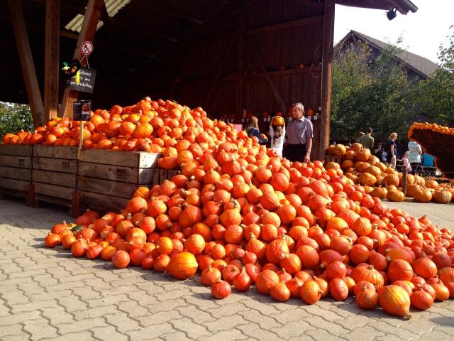 Pumpkin Overflow
