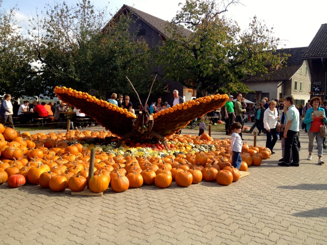 Pumpkin Butterfly