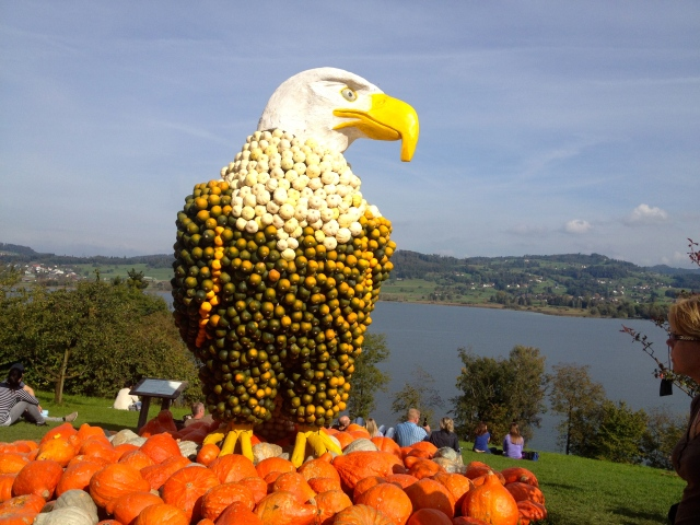 Pumpkin Eagle
